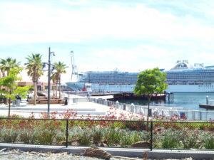 Golden Princess Downtown Harbor