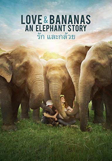 Love-Bananas An Elephant Story