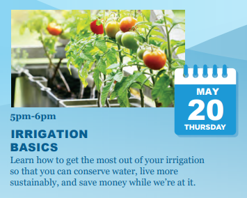 Irrigation Basics Virtual Class