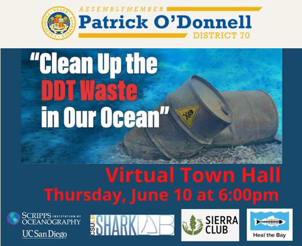 DDT Ocean Cleanup Zoom Townhall Assemblymember Patrick O'Donnell