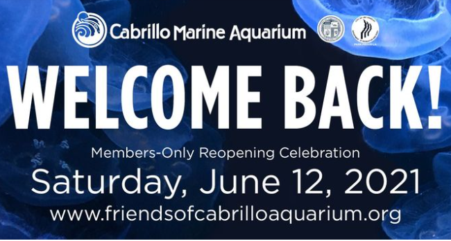 Cabrillo Marine Aquarium Members Only Reopening