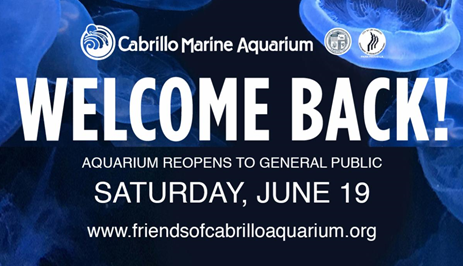 Cabrillo Marine Aquarium will officially reopen