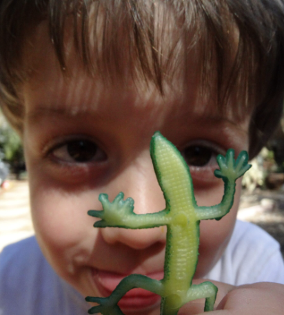 Palos Verdes Peninsula Land Conservancy Lizard Zoom 091121